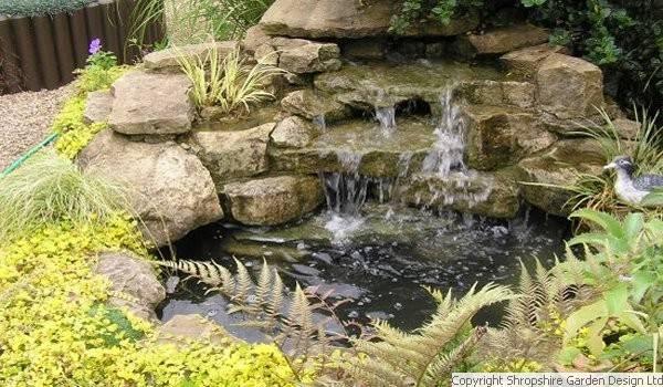 Fish Ponds Streams And Waterfalls Shropshire