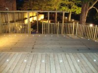 Woodland decking area in Shrewsbury