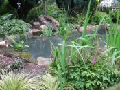 shropshire pond renovation